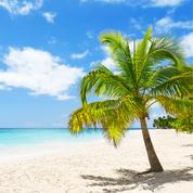 Palme am Strand, Meer, blauer Himmel mit Wolken