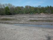 Ausbaggerung des Teichs 2010
