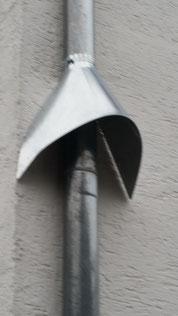 Marder- / Waschbär-Stopp