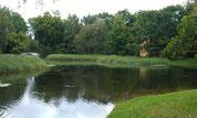 Schlosspark Senftenberg