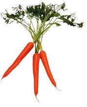 Dieta della carota: menu settimanale