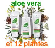 Les bienfaits du gel d'Aloe Vera sur les affections cutanées de toute sorte comme eczéma et psoriasis avec le spray d'urgence aloe vera et 12 plantes le gel concentrate, crème propolis et aloe