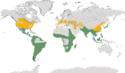 Karte zur Verbreitung der Nachtreiher (Nycticorax nycticorax)