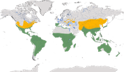 Karte zur Verbreitung des Silberreihers (Ardea alba)