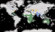 Karte zur Verbreitung des Sichlers (Plegadis falcinellus)