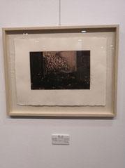 梅の塵 楮紙に銅版画 /雁皮刷り (手漉き古紙)  180×285mm 47,300円(税込)