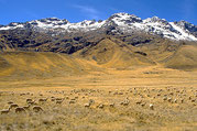 Altiplano, Paititi Tours and Adventures, Ancient Aliens Tour