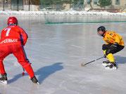 хк восток, восток, арсеньев, приморский край, бенди, хоккей, хоккей с мячом, ска, ска-нефтяник, хабаровск