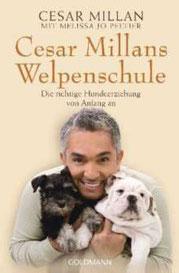 NICHT ZU EMPFEHLEN! - Cesar Millans Welpenschule