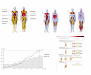 Leistungsdiagnostik Muskeln