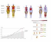 Leistungsdiagnostik Muskeltest