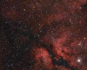 Cygnus OB2 Assoziation