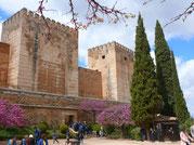 Granada-Alcazaba