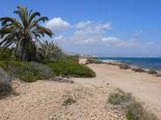 bei Santa Pola (Alicante)