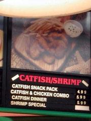Catfishsnack - sehr lecker!