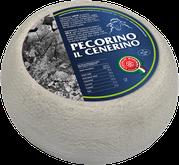 pecorino maremma new taste sheep sheep's cheese dairy caseificio tuscany tuscan spadi follonica block 1200g 1.2kg italian origin milk italy matured aged flavored flavor al cenerino cinder ash refined refine