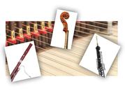 Kammermusik, Ensemble, Mieten, Konferenz, Hochzeit, Geburtstag, Konzertreihe, Schaffhausen, Zürich, Winterthur, Fagott, Oboe, Cembalo, Geige, Violine, Zelenka, Triosonate, Musik, Event, Spass, Barock
