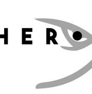 preview logo design
