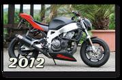 Honda CBR 900 Fireblade Streetfighter komplett Umbau