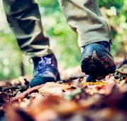 wandelschoenen bos broekpad wandelroute Zutphen Achterhoek