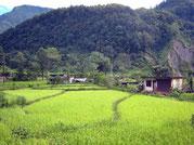 Vallée de Pokhara, Annapurna, Népal