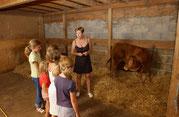 ferme Bio du Masbareau en Limousin Haute-Vienne-Nouvelle-Aquitaine