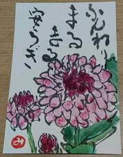 55 小菊