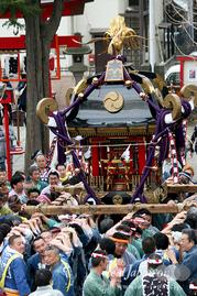 塚越稲荷神社 初午祭, 神輿渡御, 手作り神輿, 本社神輿, 埼玉県蕨市, 2016年3月13日