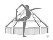 Yoga, Christine Bader, Iyengar, Iyengar Yoga