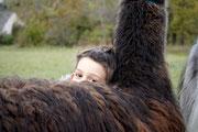 Lamas ganz nah sein, Kinderausflug, Lama mit Kind, Lama Mama, Kuscheln mit Lamas, Sommerein, Niederösterreich