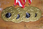 Um auf die Seite des Bezirkes zu gelangen auf die Medaillen klicken !