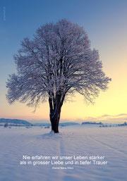 Trauerkarte mit Spruch von Rilke, Trauerkarte Rilke, nie erfahren wir das Leben stärker, Trauerkarte Linde, Trauerkarte Baum, Trauerkarte Winter, Trauerkarte Winterlandschaft