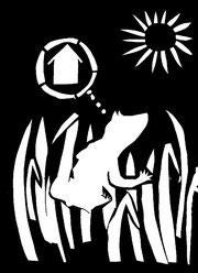 Illustration zu Andersen von Stefan