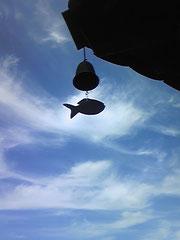 扶余の落花岩の下の寺の風鈴