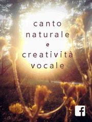 Pagina Facebook di Voce e Creatività Vocale