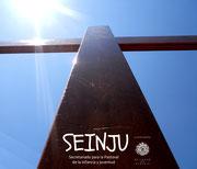 Secretariado Diocesano para la Pastoral de la Infancia y Juventud (SEINJU)