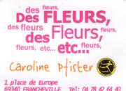 Caroline Pfister 1, place de l'Europe 69340 Francheville