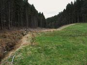 Grundstück im Heistertbachtal (Foto: Wolfgang Voigt)