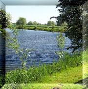 am Fluss im Sommer