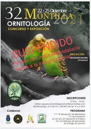 XXXI Concurso Exposición.