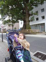 巨木に会えてうれしい人~?は~い!