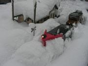 November   -    Schneeräumung