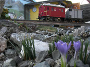 März - Der Frühling naht!