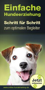 online Hundetraining, toll, Videos, gute Bindung, einfach, Hundeerziehung, optimaler Begleiter
