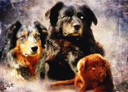 Ginger, Ishna und Hazel