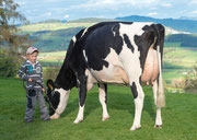 Boys at work, Yves with Mac Darling RC VG 89