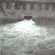 Bild: Teichler Wünschendorf Vogelmühle