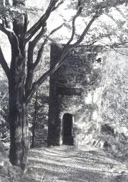 Bild: Teichler Wünschendorf Fuchsturm 1960