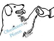 Hunde verstehen & fördern - Positives Hundetraining zwischen Ulm und Merklingen im Alb-Donau-Kreis