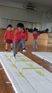 幼児体育 ミニハードル ラダー トレーニング